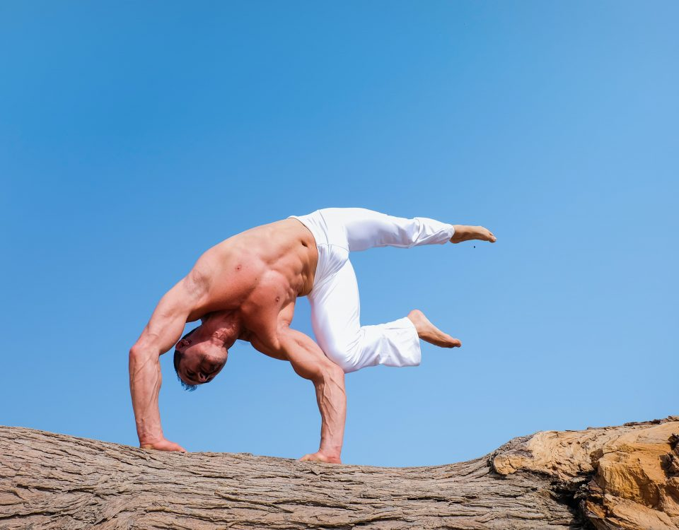 seminario meridiani tendino muscolari